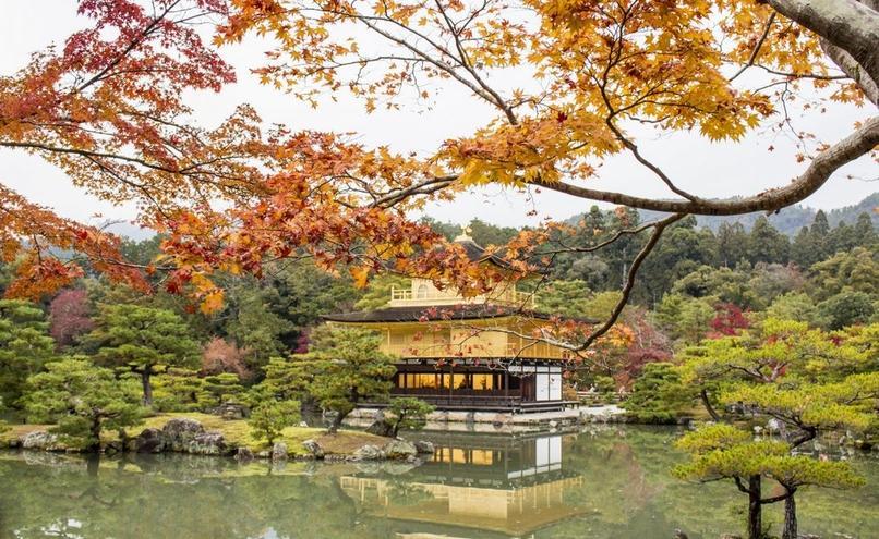 carousel-image-32-https://cms.magazynprzemyslowy.pl/media/cache/hitbox/media/galerie/d_m_g_m_o_r_i_w_japonii/img_0520.jpg